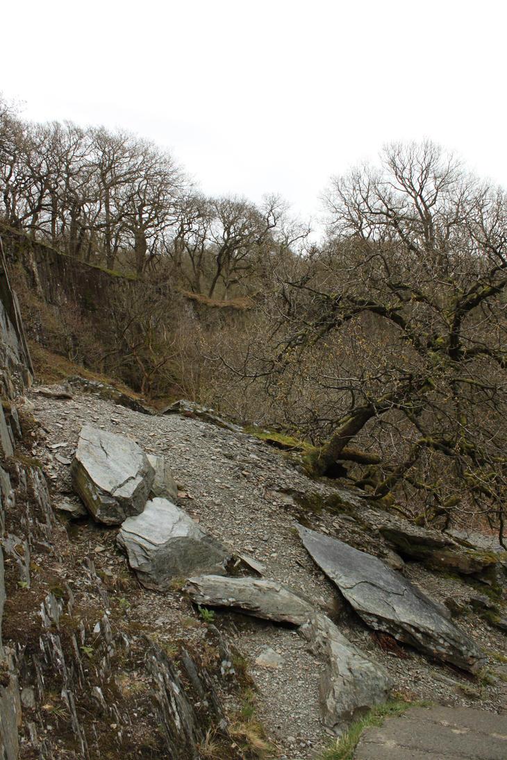 Ingleton Falls 88 by Tasastock