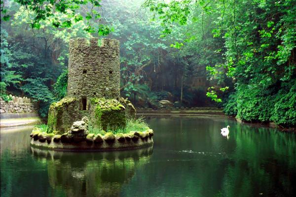 Swan Lake by nevarducorvis