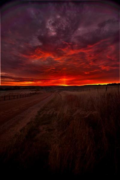 Sunrise by KylieFaye
