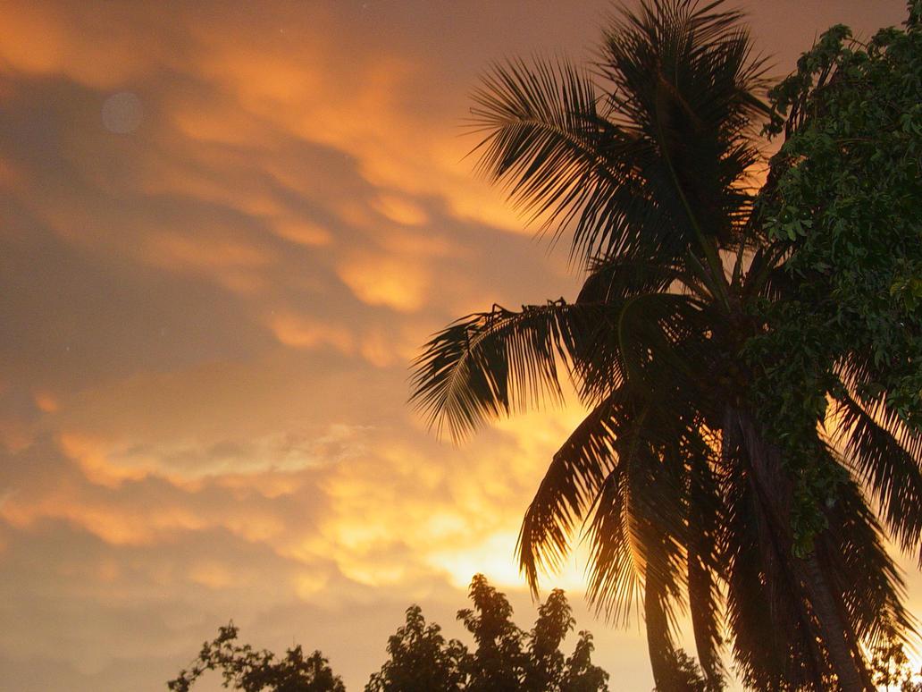 My Sunset by Hanako91