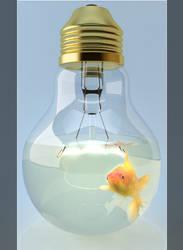 Bulb Fish
