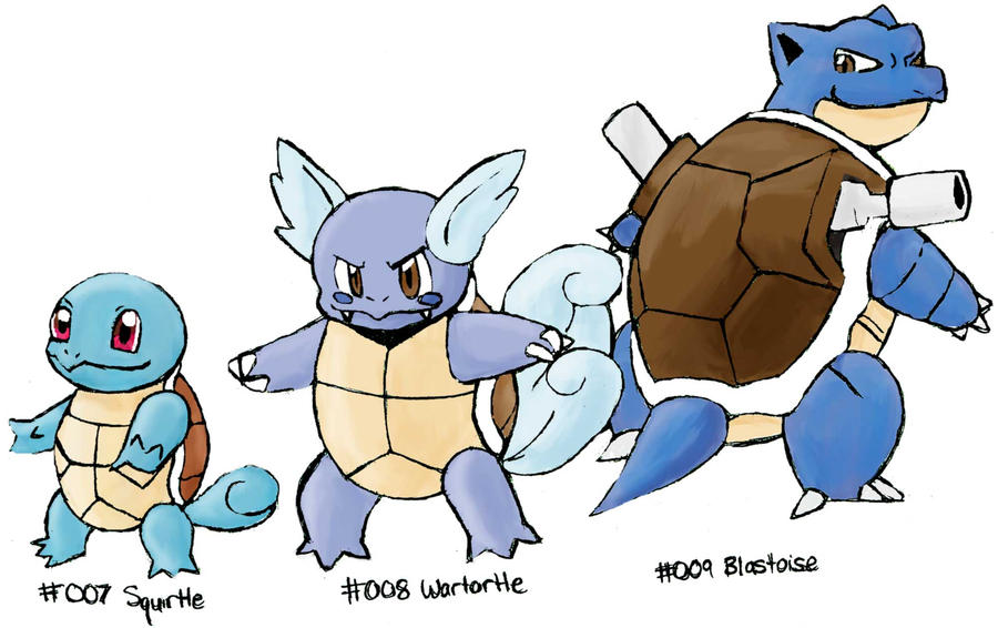 Squirtle Evolution Chain Squirtle to Blastoise by