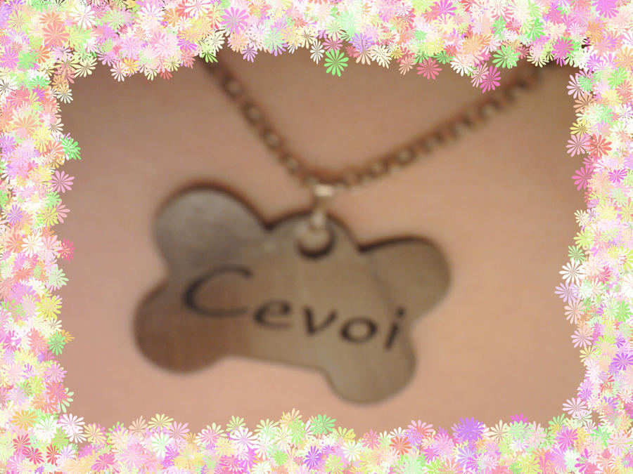 Cevoi's Profile Picture