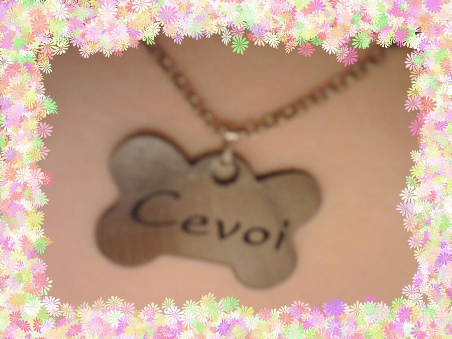 Cevoi's Profile Picture