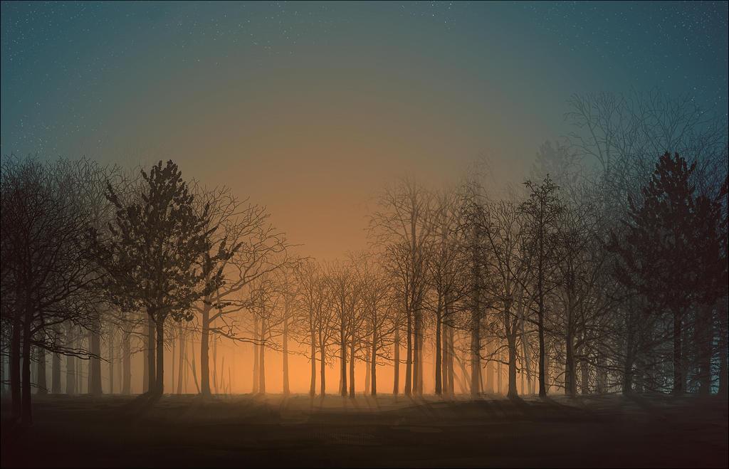 Sunrise by CuteReaper
