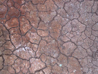 Dry Ground by DeltaSubmarineBoy