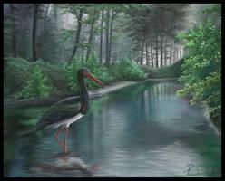 Black stork by Emberiza