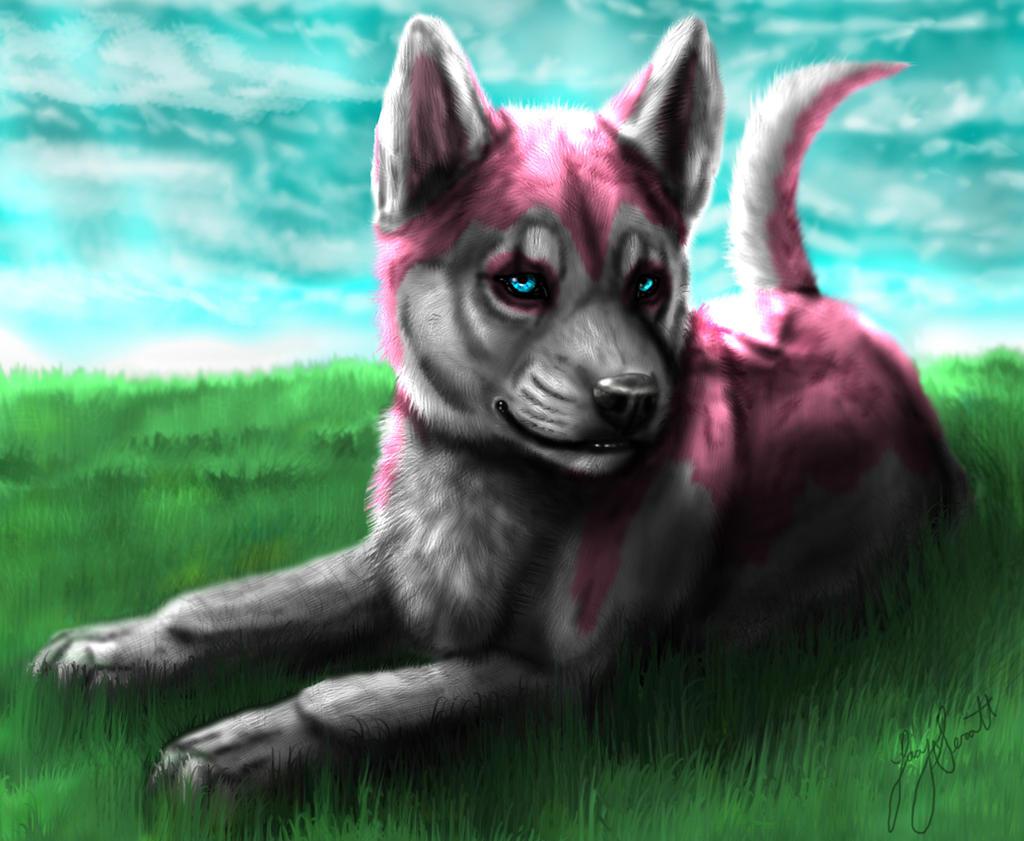 Pink Husky Puppy by VorpalBeast