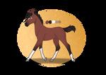 Foal (B1)