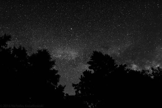 Black and White Stary Night