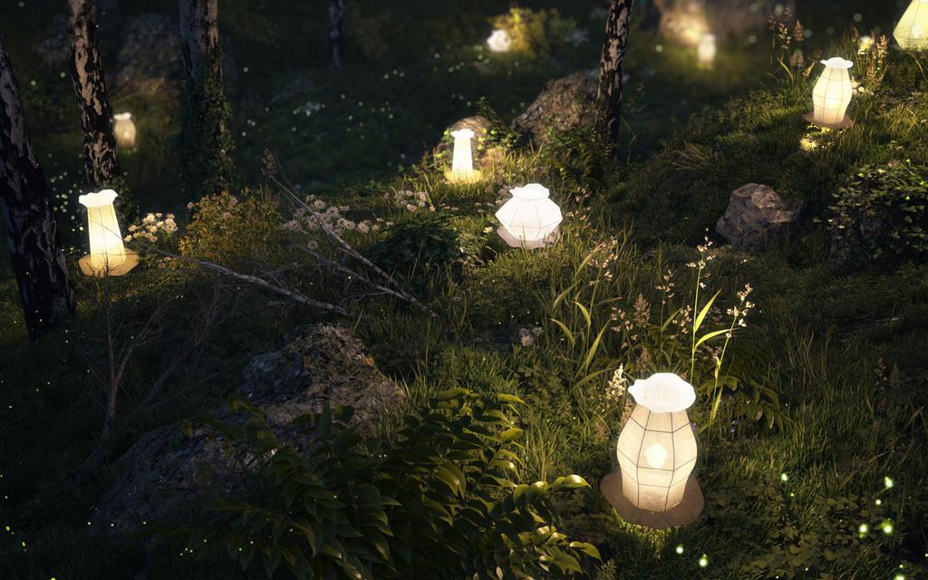 LIGHT IT UP (2nd shot) by petera
