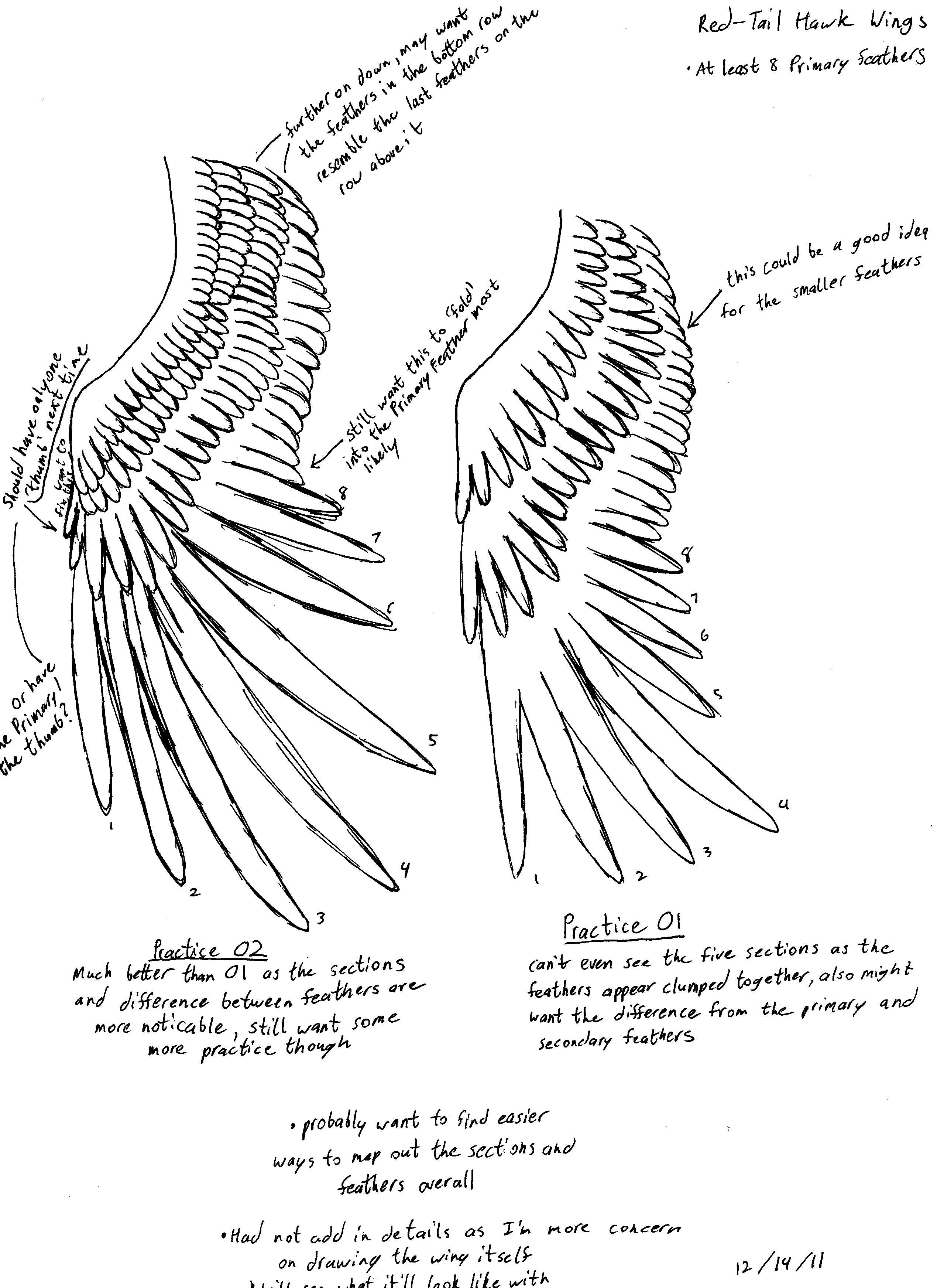 Digivolution Chart Kiimon By Chameleonveil On Deviantart Eye Diagram Brittlebear Red Tail Hawk 02 Neohydra77
