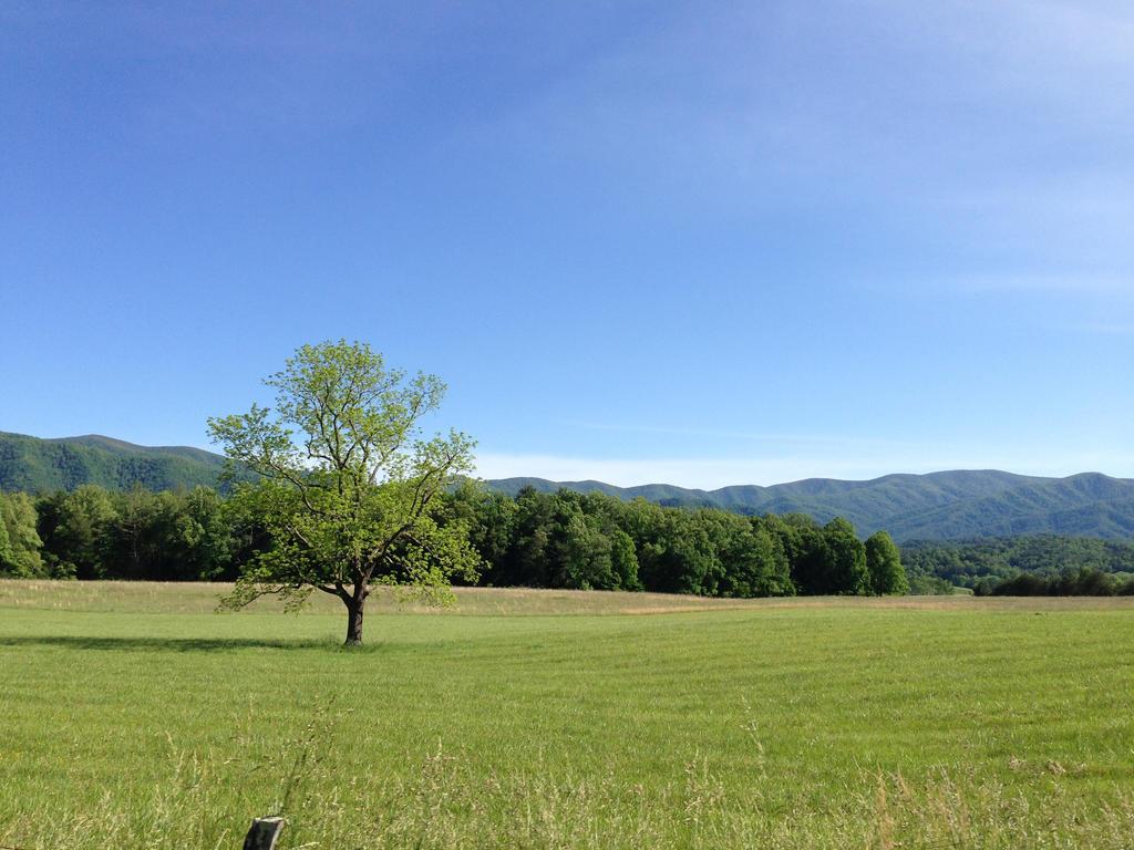 Tennessee Summer (16/26) by ScenePika