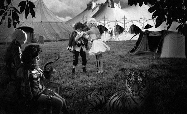 Circus Playtime by CatnipMafia