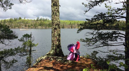 Tempestlight checking out the view (stuffy v) by EJLightning007arts