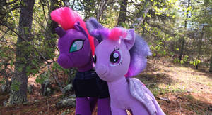 Twilight and Tempest together (stuffy version) by EJLightning007arts