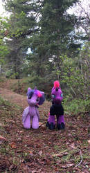 Tempestlight in the Wood (Stuffy Version) by EJLightning007arts