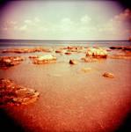 Holga - Rocks