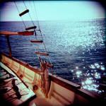 Holga - Sails