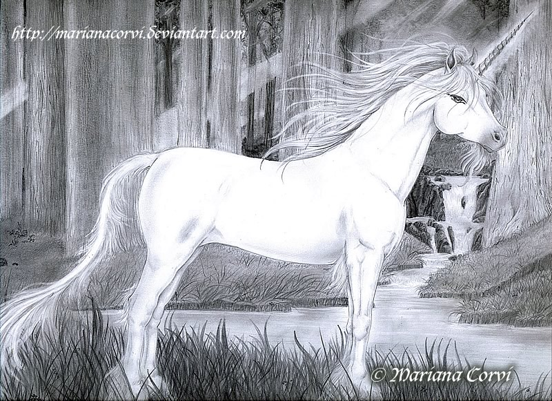 Unicornio Dibujos A Lapiz