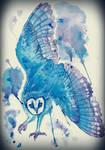 Danse Chouette-Effraie by avianAbstraction