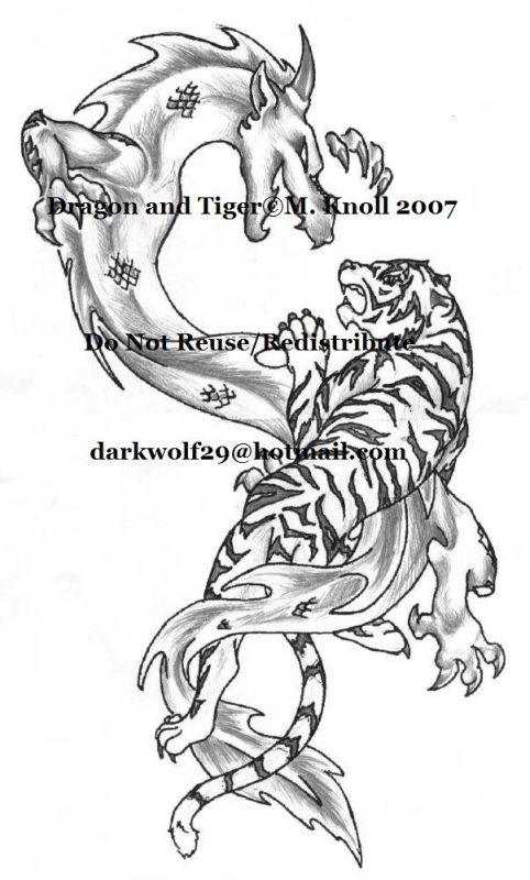 Dragon and Tiger - sleeve tattoo