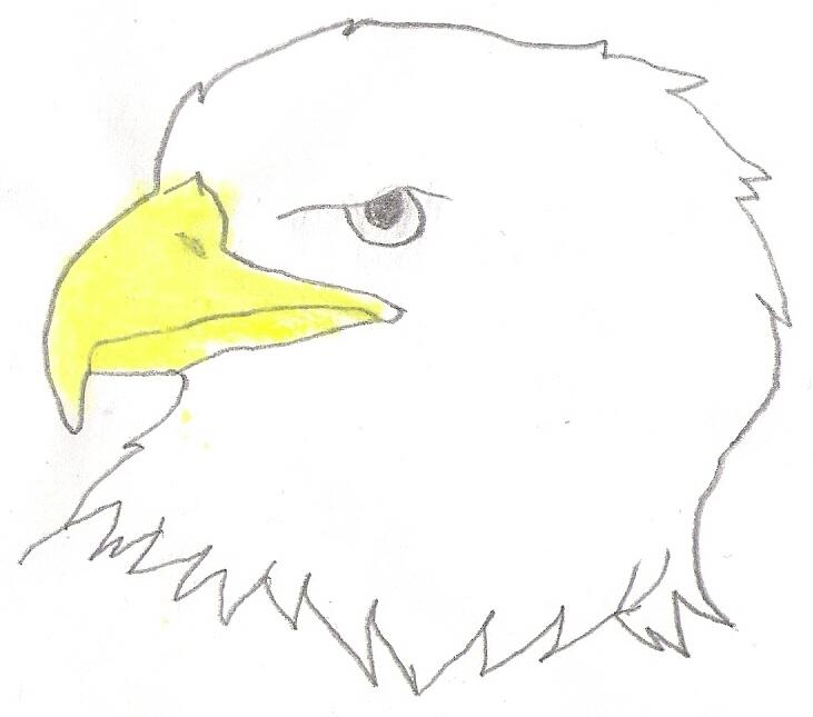 Simple Eagle Head Drawings