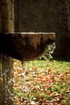 Autumn spirit ii