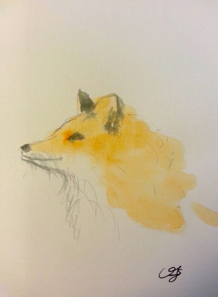 Fox by Crishf