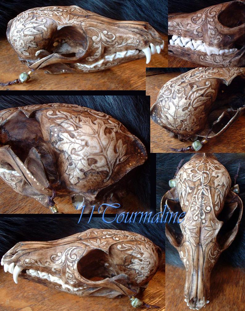 Fall theme Red fox skull by tourmaline-83