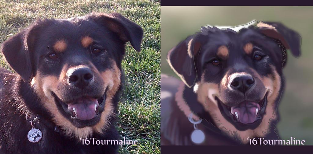 Roxy portrait wip by tourmaline-83