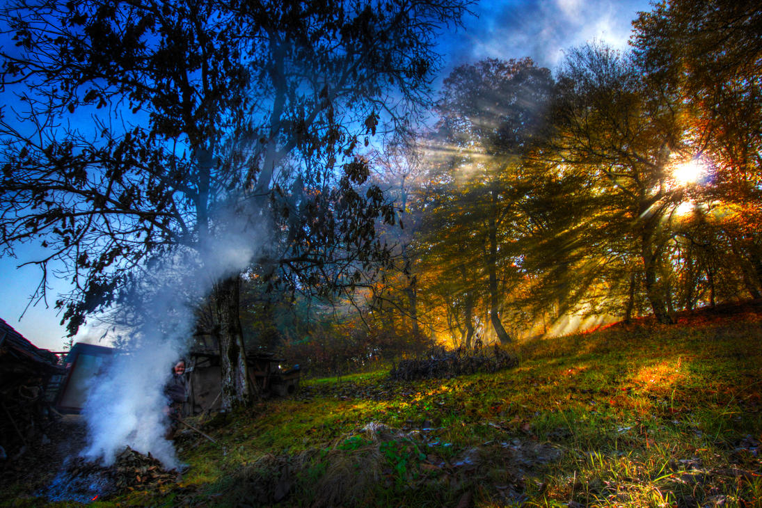 Shadows and Smoke by borda