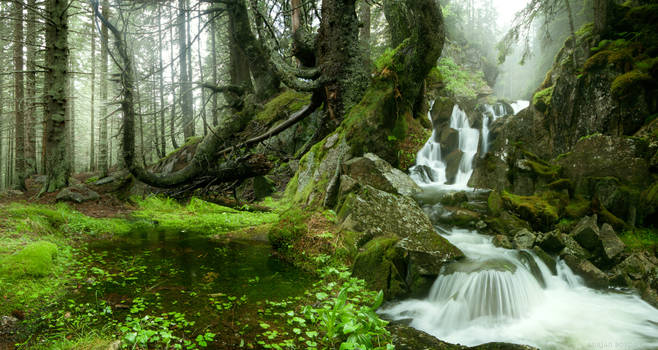 The Green Land by borda