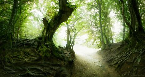 The Path to Elysium II