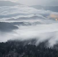 A Magical Dawn by borda