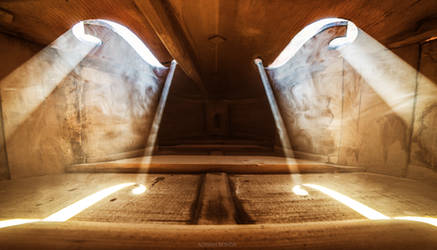 Inside a Violin III by borda