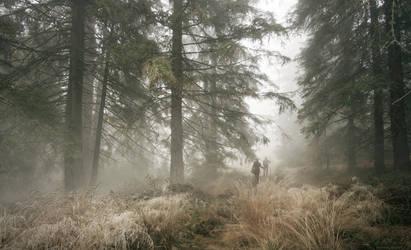 Misty Lands by borda