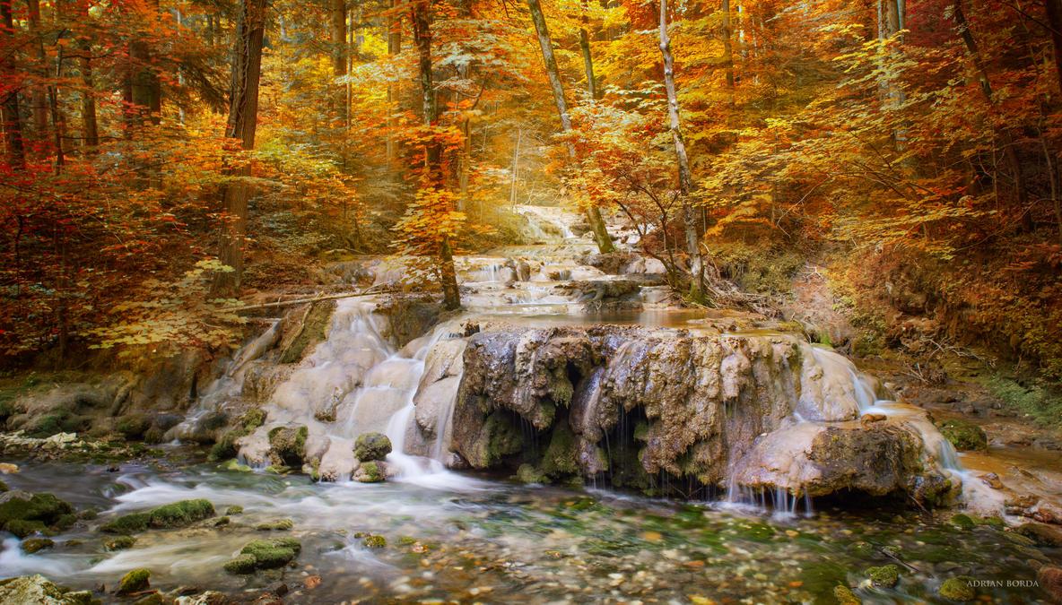 Autumn Mood by borda