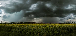 Twin Storms by borda