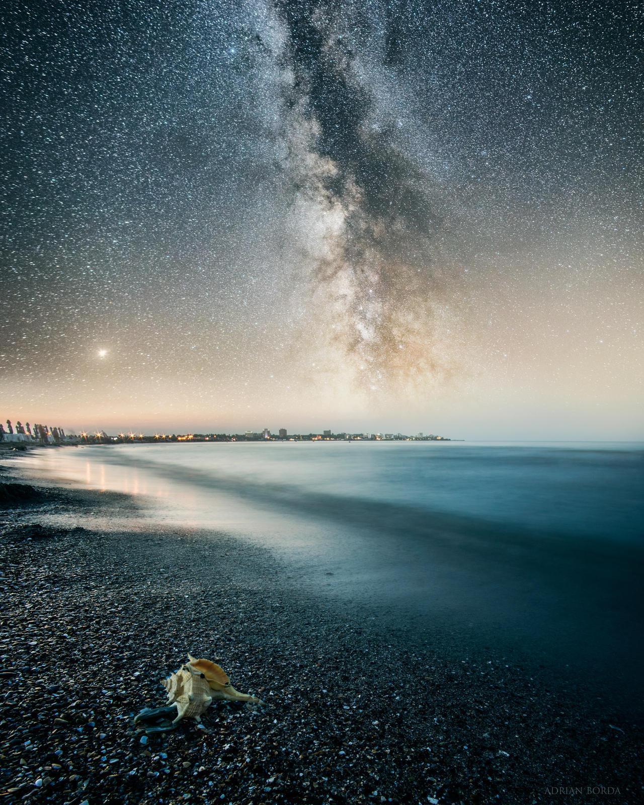 Stardust by borda