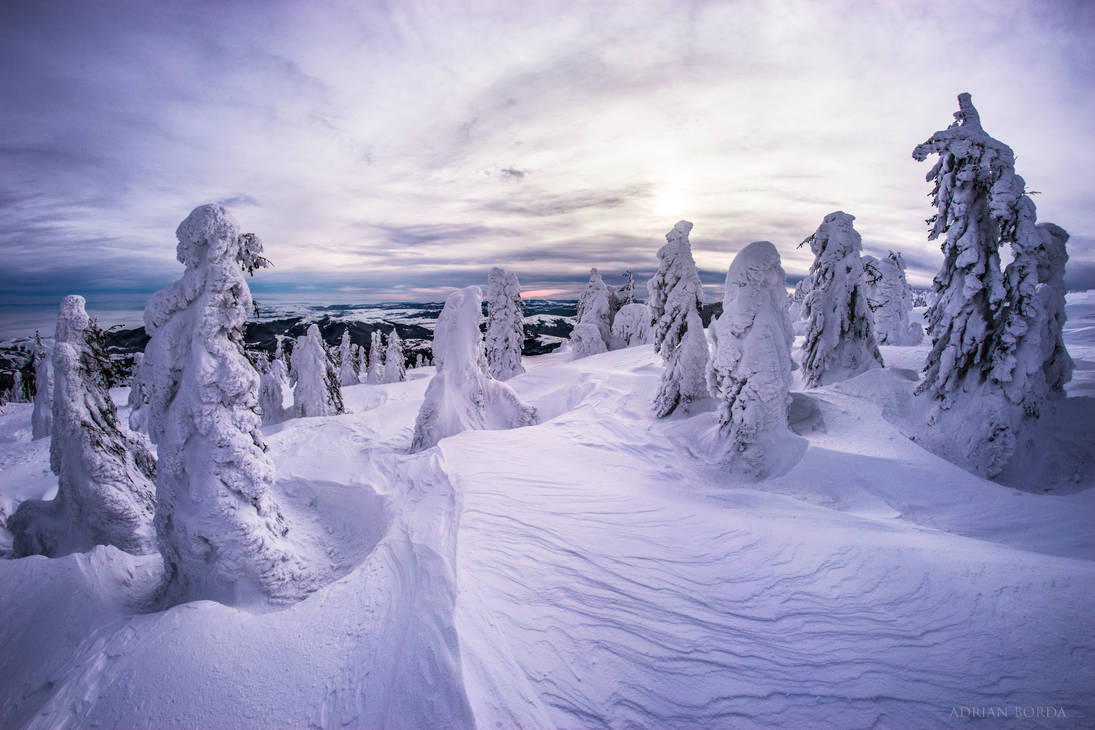 Frozen Army by borda