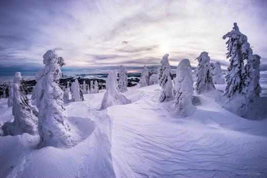 Frozen Army