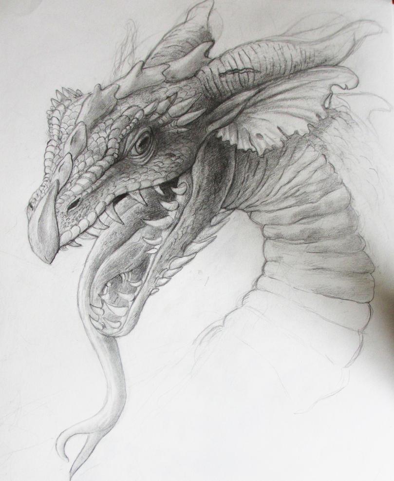 Dragon Sketch by EmeraldJune