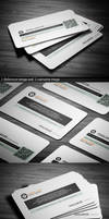 Pixelancer corporate business card