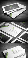 Professional Business Card by calwincalwin