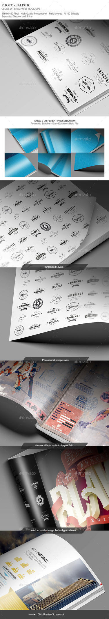 Flyer / Logo / Brochure / Close-Up Mock-Up by calwincalwin