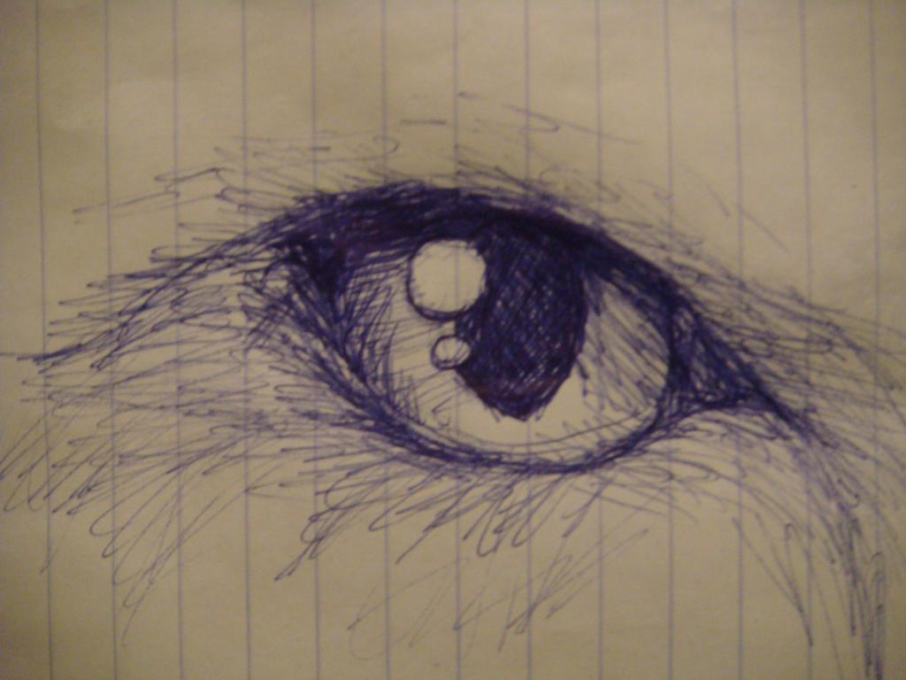 Cat Eye Sketch by polarbears101 on DeviantArt