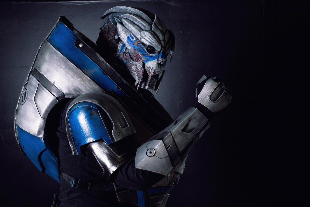 Garrus by Gryz