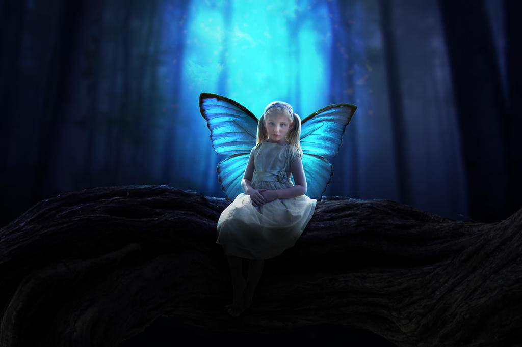 abondonned butterfly by karimdell