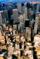 Tilt Shift by infazz